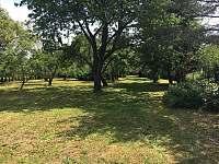 Zahrada - chata k pronajmutí Divišov u Benešova