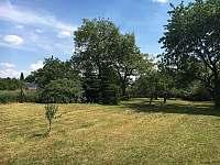 Zahrada - pronájem chaty Divišov u Benešova