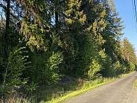 cesta pod lesem - Nepomuk pod Třemšínem