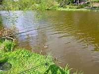 Rybolov před chatou - k pronájmu Sázava