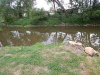 řeka - chata k pronajmutí Vlastějovice
