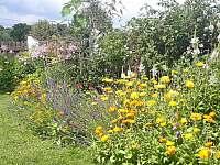 Rozkvetlá letní zahrádka - pronájem chalupy Milešov