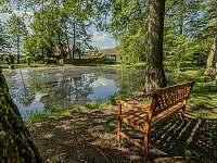 Olšový háj vedle rybníka - chalupa k pronajmutí Postupice