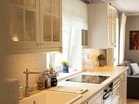 Kuchyňský kout je plně vybaven - rekreační dům ubytování Mělník
