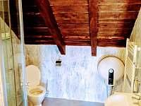 Čenovický dvůr - apartmán k pronájmu - 28 Čestín - Čenovice