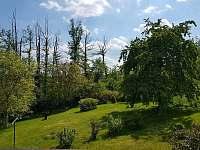 Zahrada - pronájem chaty Řitka
