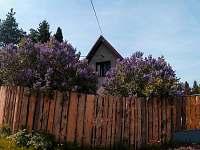ubytování Křivoklátsko na chatě k pronajmutí - Malé Kyšice