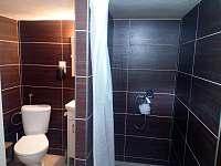 Koupelna se sprchovým koutem a wc - Čížov