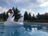 Luxusní moderní Vila se slaným bazénem a kinem - vila k pronájmu - 6 Samopše