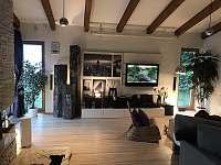 Luxusní moderní Vila se slaným bazénem a kinem - vila k pronajmutí - 11 Samopše