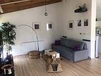 Luxusní moderní Vila se slaným bazénem a kinem - pronájem vily - 12 Samopše