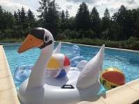 Nafukovací zábava, hračky a lehátka do bazénu - vila ubytování Samopše