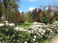 Zámecký park v Janovicích