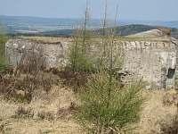 Bungry v Brdech na Jordánu