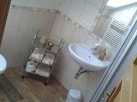 Koupelna: sprchový kout, umyvadlo, WC