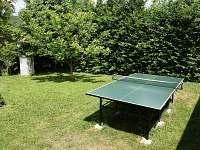 stolní tenis 87 červený