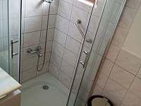 koupelna - rekreační dům k pronajmutí Sázava - Černé Budy