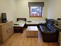 Apartmán pro 5 osob v přízemí - obyvací část - pronájem chalupy Opolany u Poděbrad