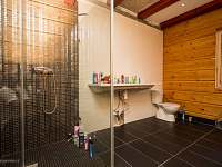 Koupelna se sprcháčem,wc,pračkou..a velkým umyvadlem