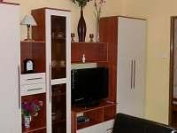 Apartmán Hájenka - apartmán k pronájmu - 28 Nové Hutě
