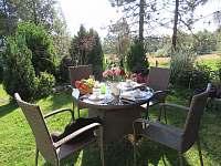 Zahrada - apartmán k pronajmutí Nové Hutě