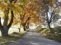 podzim - chalupa k pronajmutí Petrovice u Sušice - Strunkov