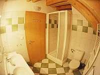 Apartmán v Lipně - apartmán k pronájmu - 15