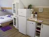 lednice, mrazák, myčka nádobí ... - chalupa k pronajmutí Podmokly u Sušice