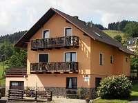 ubytování  v apartmánu na horách - Hartmanice