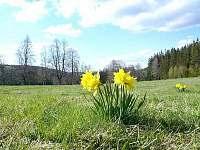 Jaro na Hůrce