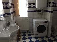 Apartmán Lipno - apartmán - 19