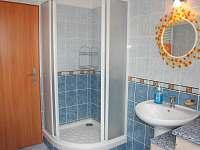 Koupelna se sprchovým koutem - Frymburk