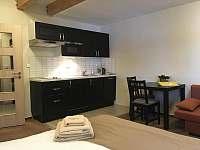 kuchyň - apartmán k pronajmutí Přední Výtoň