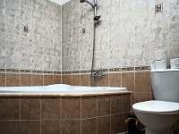 koupelna - pronájem apartmánu Lipno nad Vltavou