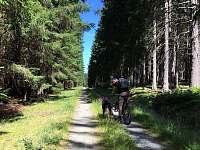 Cesta z chalupy k rybníku - Černé Údolí