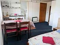 Apartmán 1 - pronájem chalupy Nová Pec - Bělá