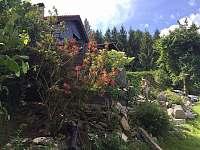 ubytování Ski areál Nýrsko Chalupa k pronajmutí - Javor - Loučany