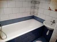 Koupelna - apartmán k pronájmu Horní Planá