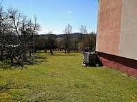 Příchod na zahradu od bytu pro ubytované - Horní Planá