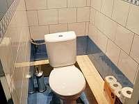 Samostatné WC - pronájem apartmánu Horní Planá