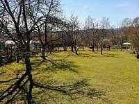 Zahrada k dispozici ubytovaným - Horní Planá