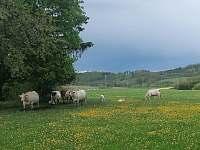 pastvina - chalupa ubytování Hliněný Újezd