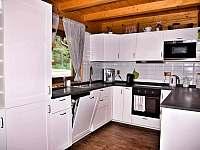Plně vybavená kuchyně včetně kávovaru - srub k pronajmutí Mochtín - Srbice