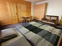 Pokoj 1 - apartmán k pronájmu Zdíkov - Masákova Lhota
