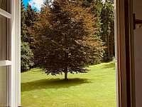 Apartmán 1 - výhled z okna - pronájem Schöneben