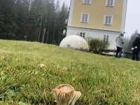 Ráj pro houbaře - Schöneben