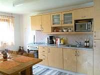 Apartmán v přízemí - kuchyňský kout - chata ubytování Lipno nad Vltavou - Kobylnice