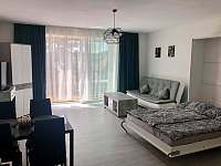 Lipno apartmán u jezera - apartmán k pronájmu - 3