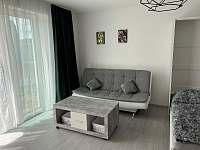 Lipno apartmán u jezera - apartmán k pronajmutí - 8