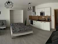 Lipno apartmán u jezera - apartmán ubytování Lipno nad Vltavou - 5